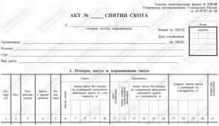 СП-45. Акт снятия скота (с откорма, нагула, доращивания)